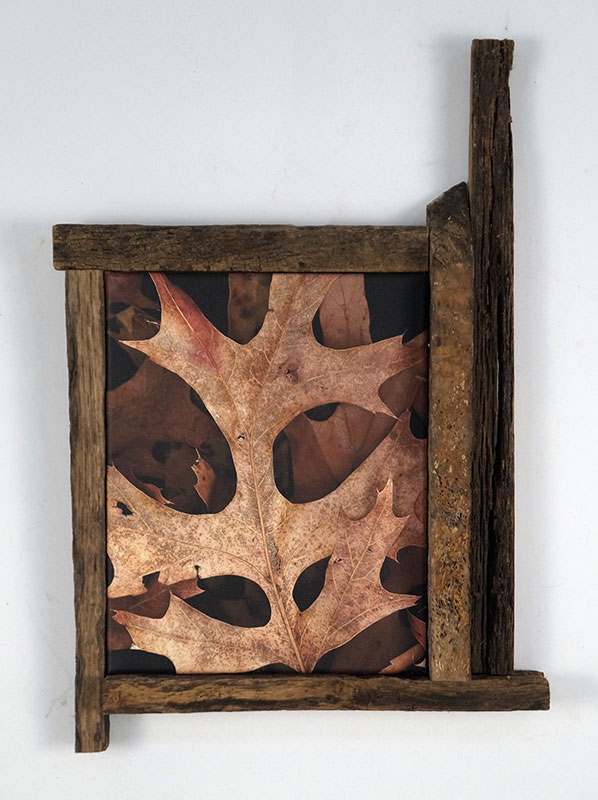 Leaves After Kline Framed