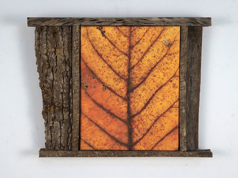 Leaf After Rouault Framed
